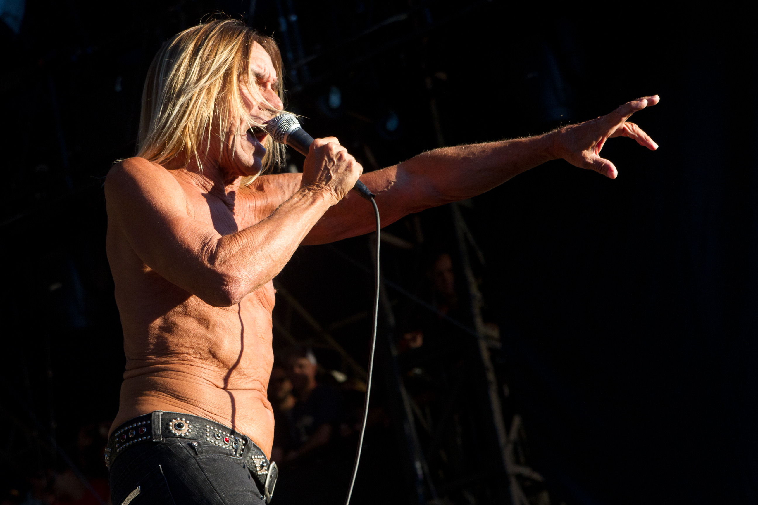 Iggy & The Stooges, due date in Italia a luglio