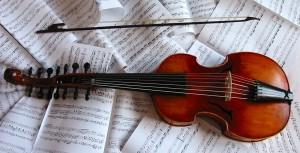 viola Damore