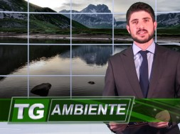 TG-AMBIENTE-FOTO