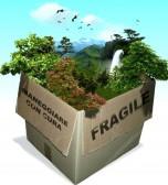 ambiente fragile2
