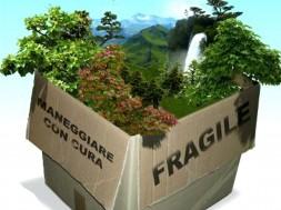 ambiente_fragile2