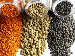 Various of spices and beans