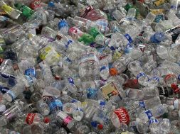 Despite Push From Environmentalists, Bottled Water Consumption Remains Ubiquitous