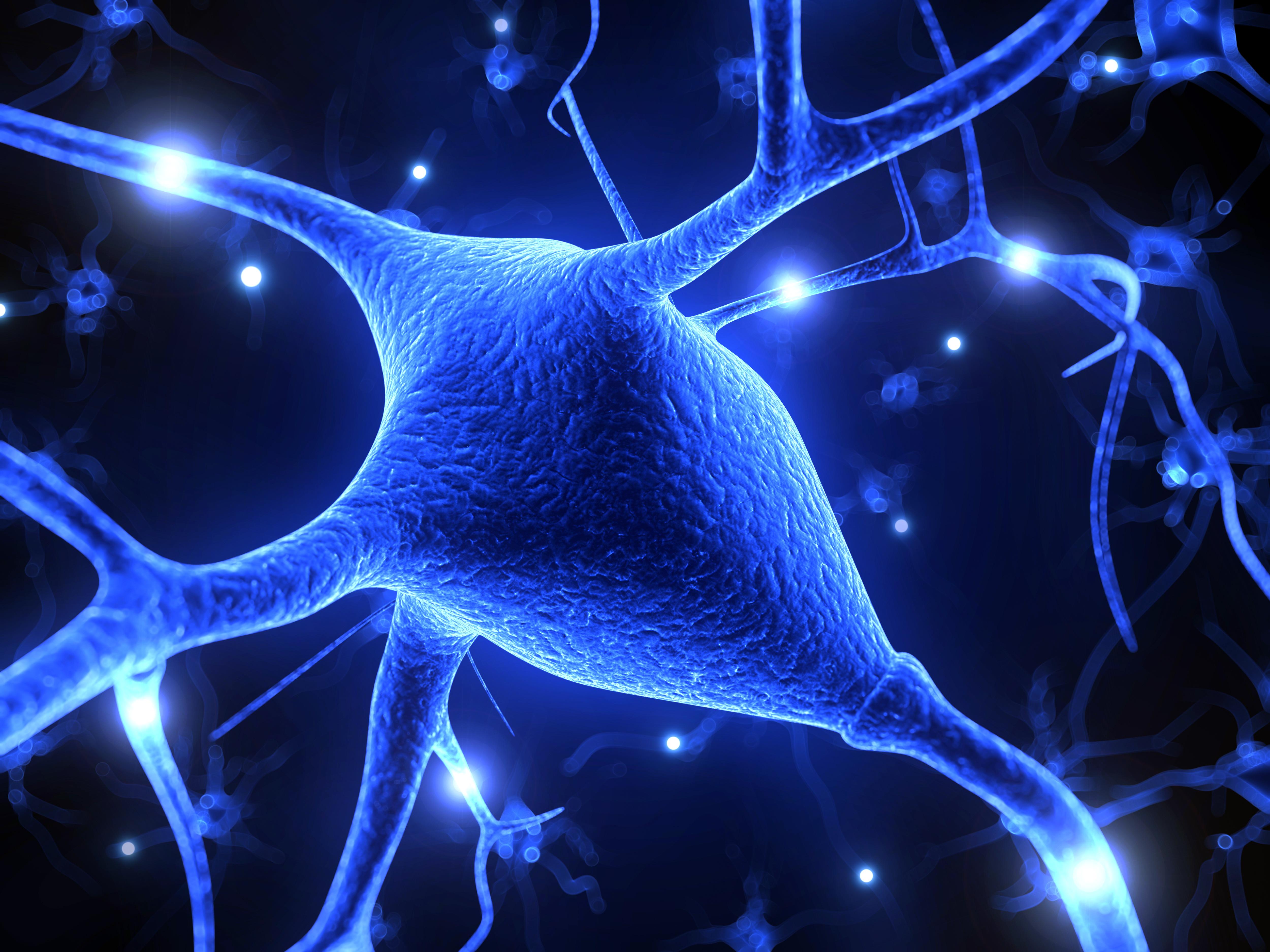 3d rendered illustration – nerve cell
