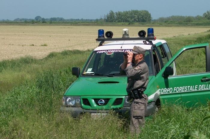 """Umbria, Operazione """"Acciaio sporco"""": il Corpo Forestale dello Stato in azione nel centro nord Italia"""