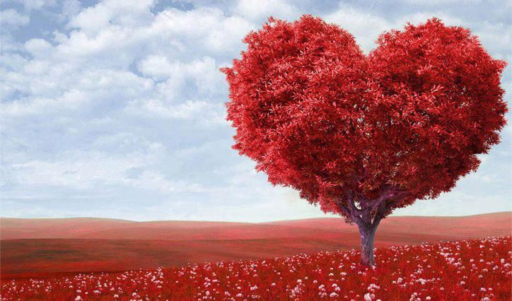Innamorarsi: cosa significa e quali sono i sintomi dell'innamoramento