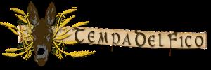 logo tempadelfico definitvo21